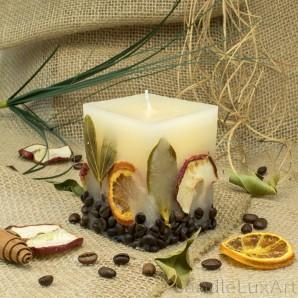 Würfelkerze Früchte 7x8,5cm Duftkerze  Vanille
