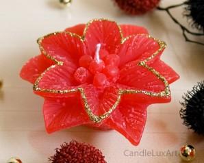 Weihnachtsstern Rot mit Goldrand - 8cm