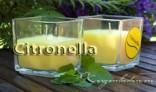 Citronella Kerzen