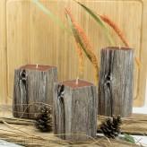 Kerzen Sandelholz Baumstumpf Beige 3 Varianten 14-20cm