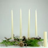4 Tafelkerzen Spitzkerzen Leuchterkerzen gekratzt - creme 38cm