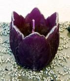 Blumenkerze Tulpe Silberrand - dunkellila